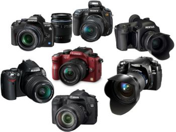 Die besten 7 Spiegelreflexkameras