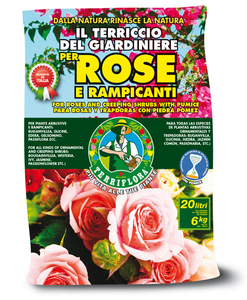 Die 7 besten Böden für Rosen